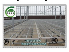 温室移动苗床介绍与作用-华耀农业设施-花卉苗床特点