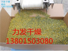 苹果片烘干机厂家|苹果片干燥机价格|苹果片专用烘干设备力发供