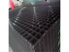 厂家直销现货钢丝网片黑铁丝网片价格5-20孔