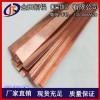 T2电流导电率高40*5mm RU2紫铜排、TP1接地紫铜条