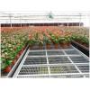 温室花卉苗床定做 常用标准规格尺寸