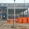QJ深井潜水泵(德能泵业)