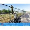 足球场防护网 足球场护栏网 迅鼎护栏供应
