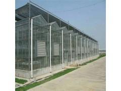 养殖业保温大棚 阳光板大棚造价 温室大棚建设厂家 辉腾温室