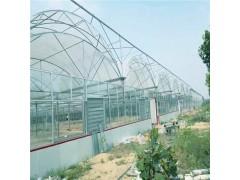 养殖日光温室 养殖蚯蚓大棚 双薄膜大棚 辉腾温室