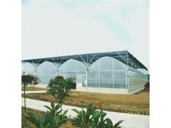 阳光板生态温室 连栋温室建造 蔬菜大棚造价 辉腾温室