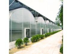 智能大棚建设 智能连栋温室 育苗温室建设 辉腾温室