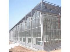 香蕉温室大棚 香茹大棚建造 玻璃温室价格 辉腾温室
