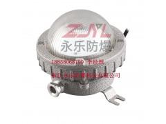 永嘉LED防爆灯现货供应20W30W吸顶灯