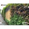 小區改造工程使用登峰廣州環保綠植圍擋立體綠化圍蔽