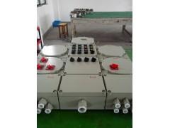 IIC級防爆配電箱BXM(D)