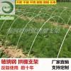 河北海润可定制防腐农用大棚支架杆实心玻璃钢纤杆