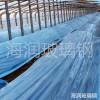 海润可定制各种型号玻璃钢拱棚杆 蔬菜育苗棚杆